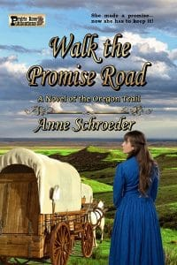 Walk the Promise Road By Ann Schroeder